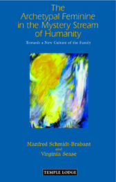 Book Cover for THE ARCHETYPAL FEMININE IN THE MYSTERY STREAM OF HUMANITY