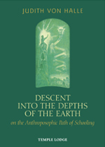 Book Cover for DESCENT INTO THE DEPTHS OF THE EARTH