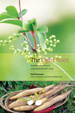 Book Cover for THE LIGHT ROOT